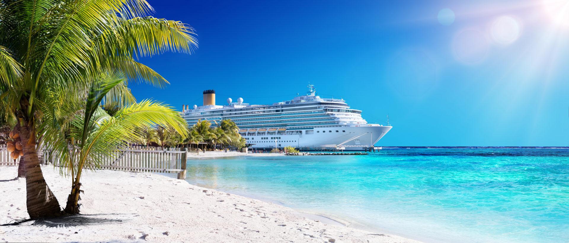 caribbean cruise beach palm tree cloud 99 tours